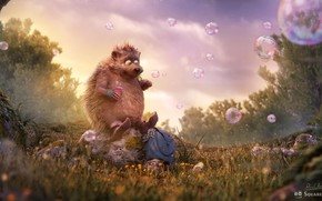 "Picture forest, summer, bubbles, bubbles, clearing, hedgehog, children's, rico cilliers, Occupation: ""Dreamer"""