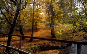 Picture Autumn, Trees, Fall, Foliage, River, Autumn, Colors, River, Trees, Leaves