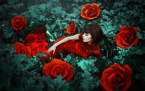 Picture girl, flowers, mood, roses, red dress, Maria Eugenia