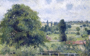 Picture landscape, picture, Camille Pissarro, A large Walnut in the Meadow. Eragny