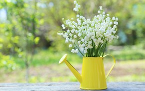 Wallpaper flowers, bouquet, spring, lake, lilies of the valley, flowers, spring, lily