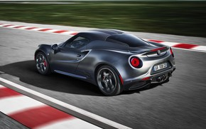 Picture rear view, racing track, 2018, Competition, Alfa Romeo 4C