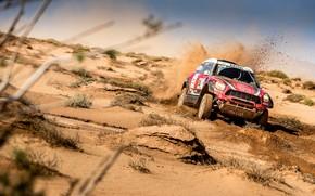 Picture Mini, Desert, Speed, Race, 307, Rally, SUV, Rally, X-Raid Team, MINI Cooper, X-Raid, X Raid, ...