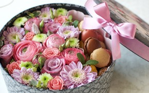 Picture box, rose, bow, chrysanthemum, Ranunculus, macaroon