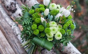 Picture leaves, green, bouquet, tulips, chrysanthemum