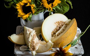 Picture summer, sunflower, melon