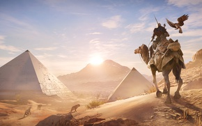 Picture sand, bird, desert, camel, pyramid, Egypt, Assassin's Creed Origins