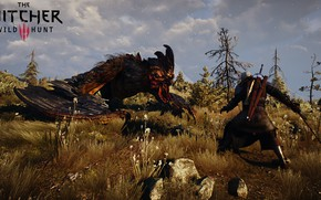 Picture the Witcher, Geralt of rivia, the Witcher 3: wild hunt