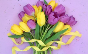 Wallpaper buds, yellow, ribbons, leaves, tulips, purple, bouquet, flowers