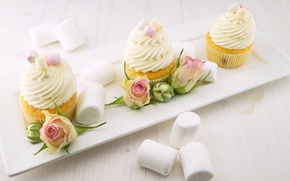 Picture buds, cream, food, plate, roses, cupcakes, marshmallows, sweet, cakes