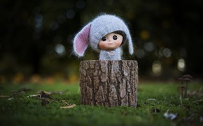 Picture hat, toy, stump, doll