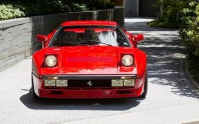 Picture Red, GTO, 1984, Supercar, Ferrari 288