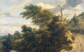 Picture landscape, tree, oil, picture, Jacob van Ruisdael, Sandy track in the Dunes