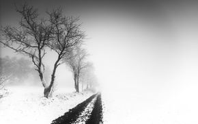 Picture road, snow, fog