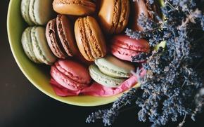 Picture cookies, lavender, macaron, macaron