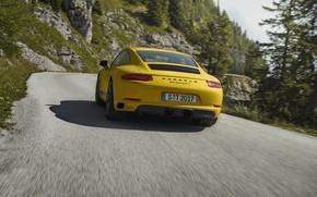 Picture road, yellow, movement, tree, vegetation, Porsche, 2018, 911 Carrera T, 370 HP