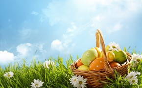 Wallpaper spring, basket, the sky, decoration, chamomile, Easter, Easter, grass, flowers, Happy, the painted eggs, eggs, ...