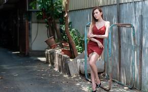 Picture summer, girl, figure, dress, legs