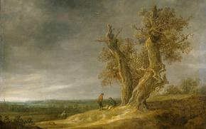 Picture nature, oil, picture, Jan van Goyen, Landscape with Two Oaks