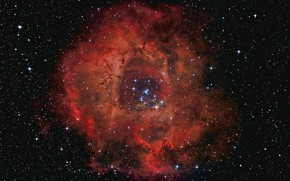 Picture NGC 2237, The Rosette Nebula, Rosette nebula