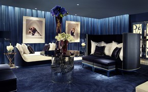 Picture flowers, blue, style, table, sofa, furniture, pillow, pictures, luxury