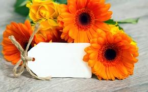 Picture bouquet, gerbera, flowers, orange