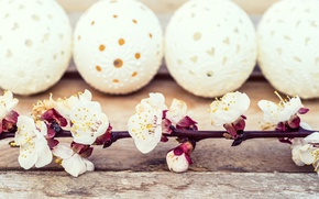 Picture flowers, holiday, Board, eggs, branch, Easter