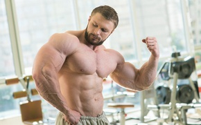 Picture pose, beard, muscle, muscle, press, simulators, biceps, gym, bodybuilder, abs, bodybuilder, gym