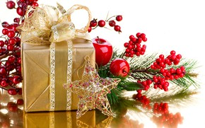 Picture holiday, gift, star, new year, Apple, bow, branch berries