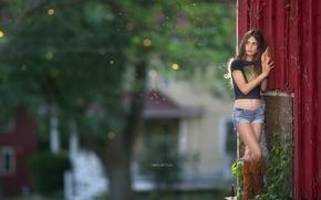 Wallpaper background, street, girl