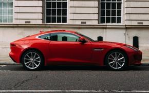 Picture red, ferrari, sport car