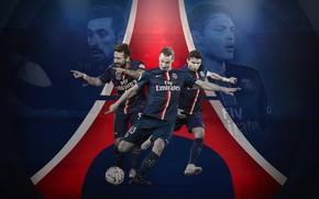 Wallpaper logo, wallpaper, players, Paris Saint-Germain, sport, football