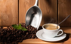 Picture leaves, coffee, spoon, Cup, drink, saucer, grain, scoop