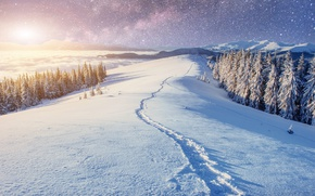 Picture winter, road, forest, the sky, stars, light, snow, landscape, mountains, night, hills, view, trail, ate, ...