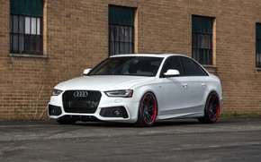 Picture audi, red, white, wheels