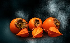 Picture mood, fruit, persimmon, Wallpapers