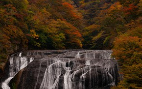 Picture autumn, trees, landscape, nature, open, waterfall, stream