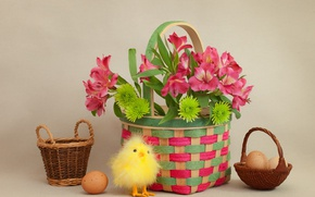 Wallpaper Easter, flowers, basket, chicken, eggs