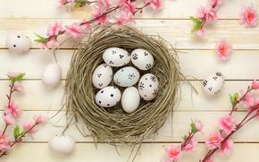 Picture flowers, basket, eggs, spring, Easter, wood, pink, blossom, flowers, spring, Easter, eggs, decoration, Happy, tender