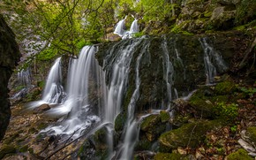 Picture forest, leaves, stones, France, waterfall, moss, the bushes, Doriaz Waterfall