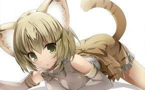Picture girl, anime, japonese, Kemono Friends