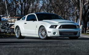 Picture GT500, Wheels, FORD, Niche, VELLA, SHELBY