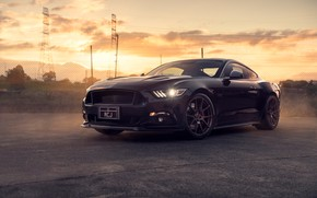 Wallpaper Ford, Mustang, Black, Front, Muscle, Car