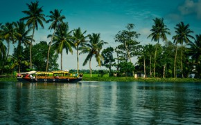 Picture greens, the sun, trees, river, palm trees, boat, India, houses, Kerala, Alappuzha