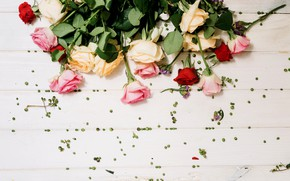 Picture flowers, roses, bouquet, buds