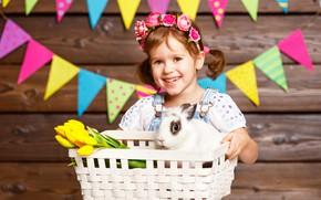Picture flowers, basket, rabbit, girl, tulips