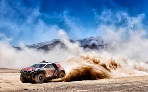 Picture Mountains, 2008, Dust, Sport, Speed, Race, Skid, Dirt, Peugeot, Lights, Red Bull, Rally, Dakar, Rally, …