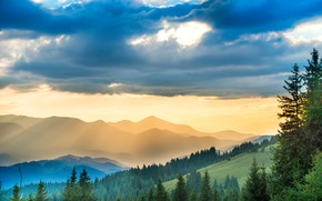 Picture forest, the sky, clouds, trees, mountains, fog, morning, slope, Ukraine, Carpathians