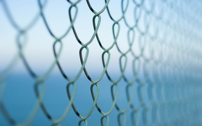 Picture macro, background, the fence, netting