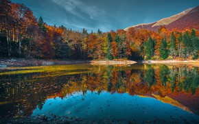 Picture autumn, forest, trees, mountains, lake, Sunny, Montenegro, Lake Biograd